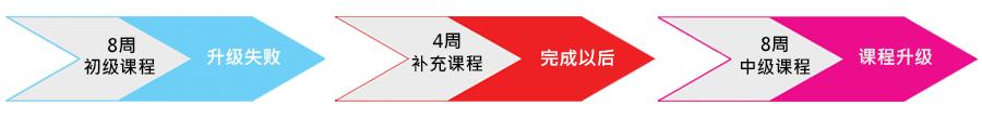GenESL Bridge Program-cn